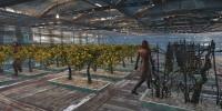 Fallout 4 Плантации для выращивания еды / Working Food Planters
